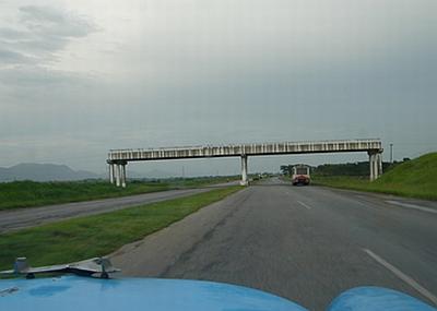 puentes_truncos