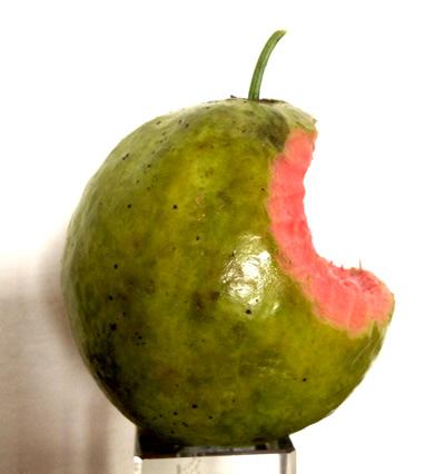 Guayaba Mac