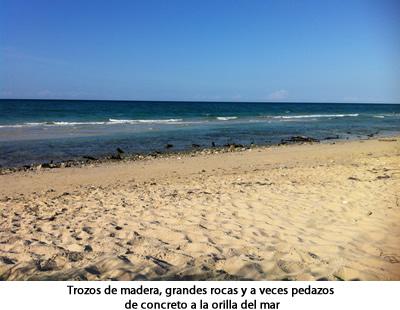 trozos_madera_orilla_mar