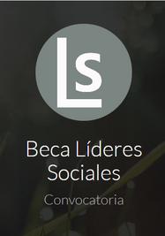 Programa de participación de líderes sociales. (Líderes Sociales)