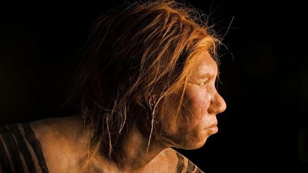 Esta reconstrucción de una mujer neandertal, desvelada en 2008, fue la primera realizada empleando ADN. (Joe McNally/National Geographic Creative)