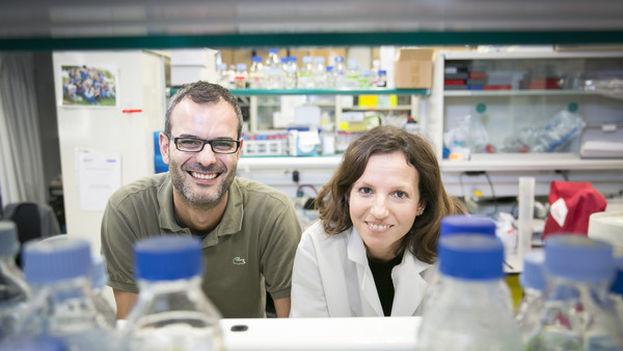 Aznar y Pascual en su laboratorio del IRB. (IRB)
