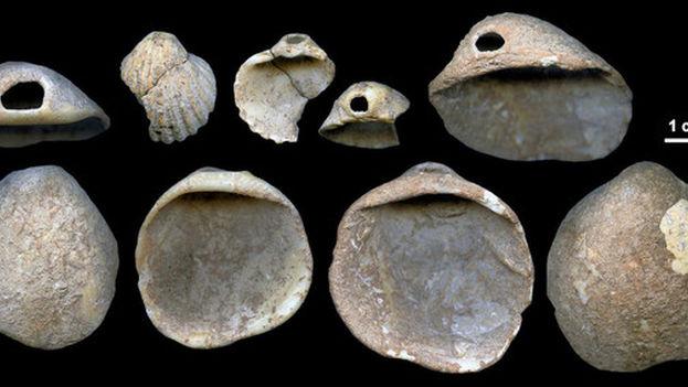 Conchas perforadas descubiertas en los sedimentos de la cueva de los Aviones de entre 115.000 y 120.000 años. (J. Zilhão)