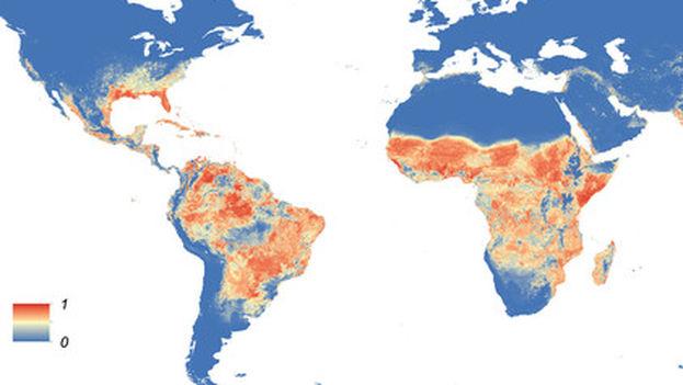 Distribución mundial prevista de 'Aedes aegypti'. (ELife)