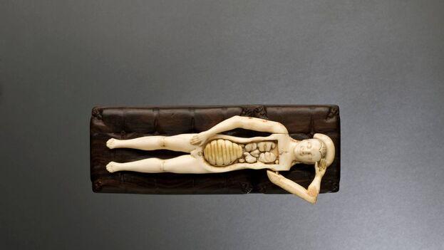 Figura anatómica de marfil, Alemania, 1601. (Museo de ciencia de Londres)