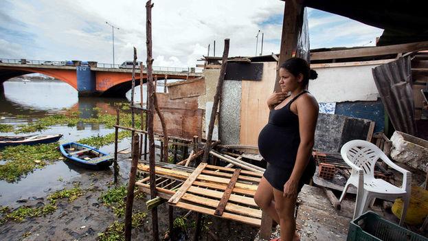 Mujer en la Favela Beco do Sururu, ubicada junto al barrio más rico de la ciudad de Recife, Boa Viagem, y donde se han registrado numerosos casos de dengue y chikunguña. (Efe)