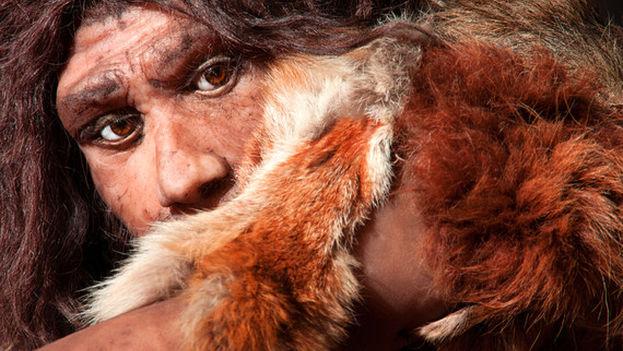 Reconstrucción de un hombre neandertal. (Fotolia)