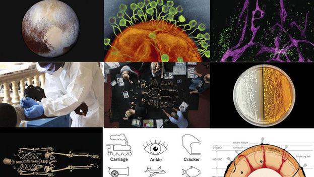 La revista 'Science' ha publicado en su página web su 'top ten' con las aportaciones más importantes a la ciencia en 2015. (SINC)
