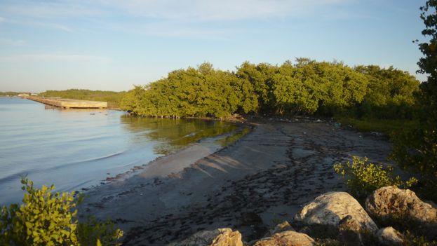 Surgidero de Batabanó, al sur de La Habana, una zona baja que ya está sufriendo las afectaciones del avance del mar. (14ymedio)