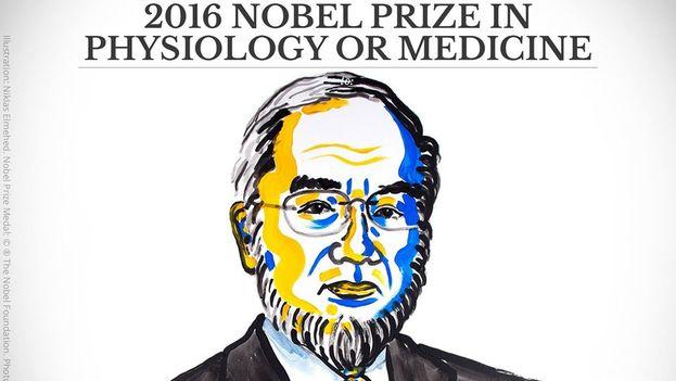 Yoshinori Ohsumi ha recibido el premio por sus descubrimientos sobre la degradación y reciclaje celular. (@NobelPrize)