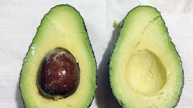El aguacate es la cuarta fruta tropical más vendida del mundo. (Fundación Descubre)