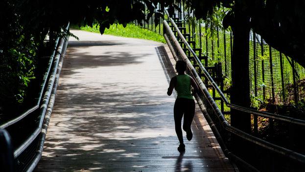 Dos horas y media de ejercicio moderado a la semana contribuyen a mantener un estilo de vida saludable. (CC)