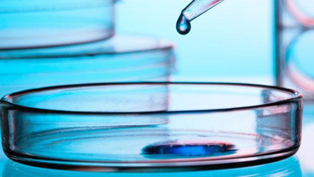 La inmunoterapia manipula con fármacos el sistema inmunitario para que reaccione frente a las células del cáncer. (Wikipedia)