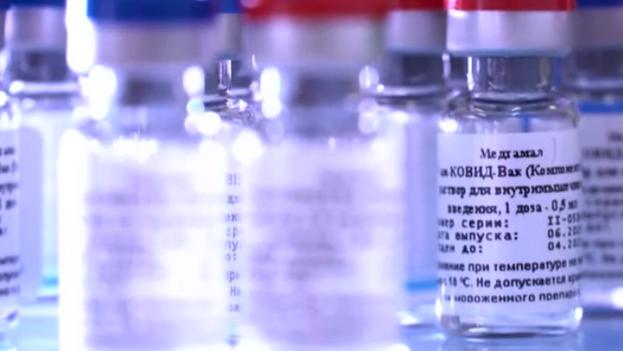 """""""La vacunación masiva comenzará con algún retraso debido a la que la mayor parte de las vacunas ya producidas se empleará en los estudios"""", aseguran las autoridades. (Captura)"""