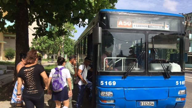 Bus. (14ymedio)