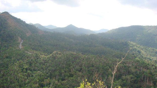 Cadena montañosa donde está enclavada la Loma de la Pimienta, en el municipio Candelaria de la provincia de Artemisa y donde este sábado se estrello un AN-26 de las fuerzas Armadas. (14ymedio)