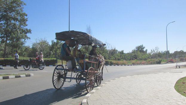 Carretón de caballos