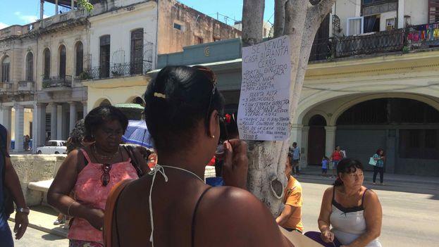 Cientos de personas se dedican a facilitar la compraventa de inmuebles en La Habana. (14ymedio)