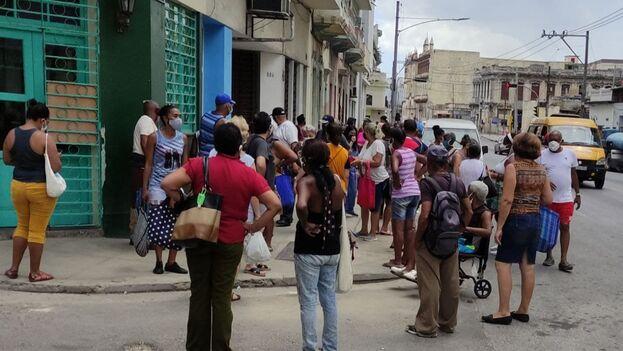 Cola de este 27 de julio para comprar en la Pescadería Especial de San Lázaro en La Habana. (14ymedio)