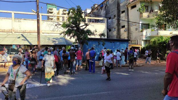 Cola para comprar bolsas de nailon, en 17 y K, La Habana. (14ymedio)