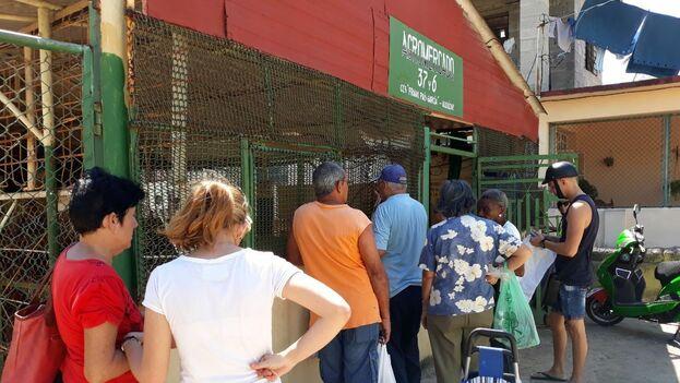 Cola para comprar las papas en el mercado de 37 y 6, La Timba, en el municipio Plaza. (14ymedio)