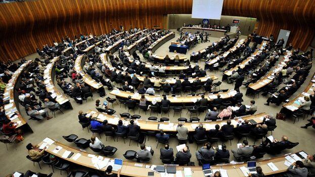 Las naciones que tienen el honor de integrar el Consejo de Derechos Humanos deben comprometerse con el derecho internacional, dicen los firmantes. (ONU)