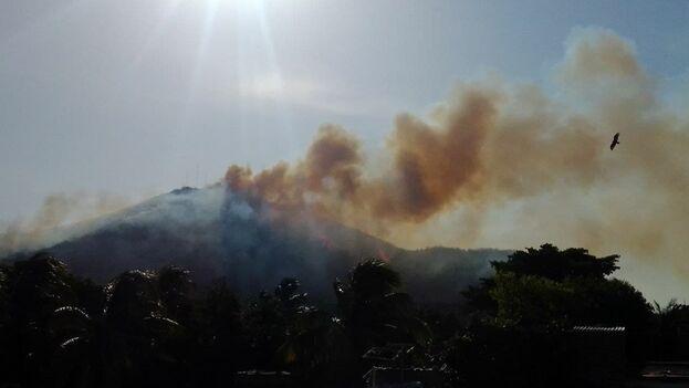 """Fuentes oficiales apuntaron que el incendió encontró """"condiciones favorables para propagarse"""". (Cortesía)"""