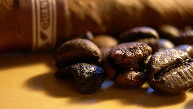Granos de café. (Flickr)