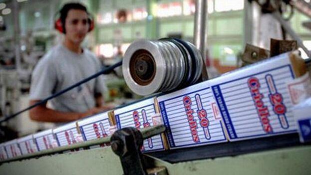 Imagen de la producción de cigarros Criollos en la fábrica de Holguín. (Radio Angulo)
