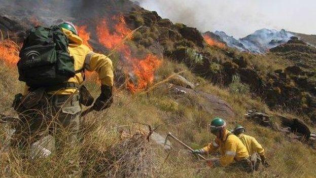 Incendio forestal en la Ciénaga de Zapata. (Ecuasiva)
