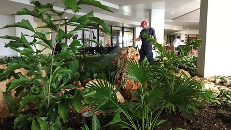 'Lobby' del Hotel Meliá Habana, donde se produjo el accidente que costó la vida a Luis Lima. (Facebook)