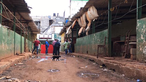 Mercado Egido en La Habana. (14ymedio)