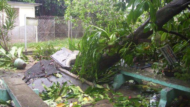 El huracán Michael provocó daños visibles en la provincia de Pinar del Río. (Radio Sandino)