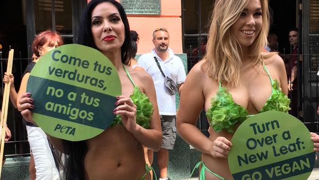 Pocos minutos después del mediodía las Mujeres Lechuga se posicionaron en la esquina de las calles Obispo y Mercaderes en La Habana Vieja. (14ymedio)