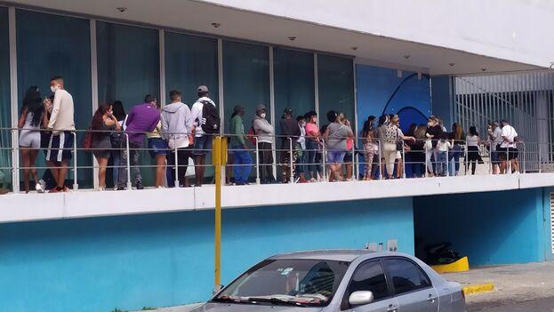 """""""Nadie sabe qué van a vender, pero estoy aquí por si acaso"""", dice un joven en una fila bajo el hotel Habana Libre. (14ymedio)"""