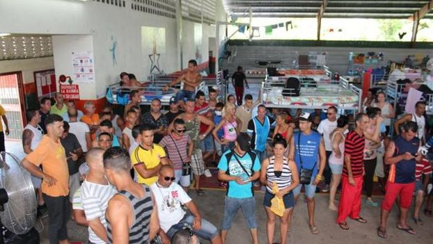 En estos momentos hay más de 980 cubanos varados en Paso Canoas, localidad panameña fronteriza con Costa Rica. (EFE)