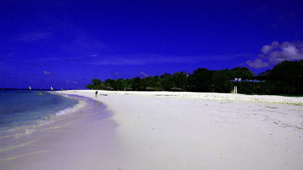 Playa de Guardalavaca, en Holguín, donde un ataque de tiburón acabó con la vida de un cubano. (Flickr/CC/ Space Ritual)