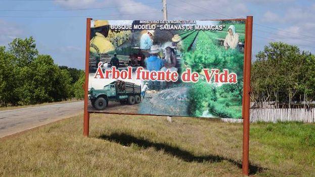 Sabanas de Manacas, en Villa Clara (@casapuebloorg)