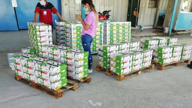 La empresa estatal intermediaria, Frutas Selectas, informó a través de su director de Exportaciones, Enrique Valdivia Portal, de que la venta fue de 1,08 toneladas. (Facebook)
