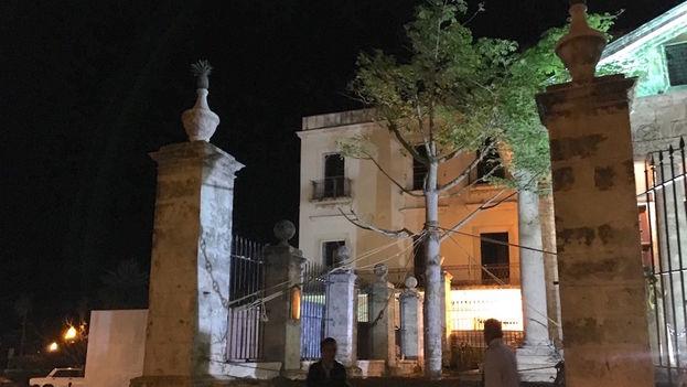El Templete de La Habana tiene una nueva ceiba que sustituye a otra que fue sembrada hace poco más de un año pero que no prosperó. (14ymedio)
