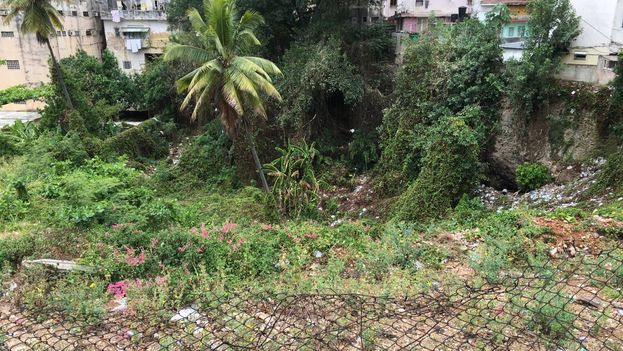 Las autoridades planean construir en estos primeros meses los accesos y los parqueos del edificio. (14ymedio)