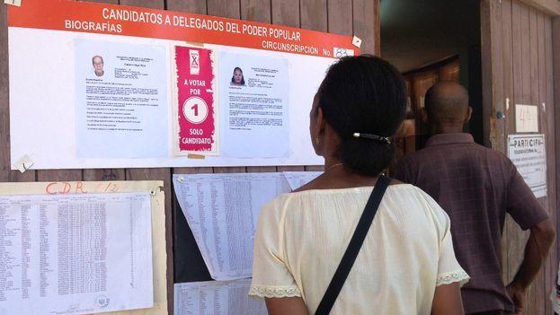 Una mujer mira las biografías de los candidatos antes de votar en las elecciones municipales en Cuba. (14ymedio)