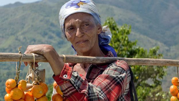 Una campesina vende mandarinas a los turistas al borde de la carretera. (G. Balding)
