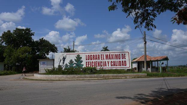 Un cartel invita a los campesinos a lograr el máximo de eficiencia y de calidad. (14ymedio)