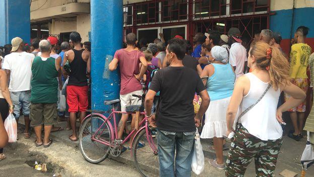 En la capital cubana la gente se lanza desesperada a los mercados y panaderías en busca de provisiones. (14ymedio)