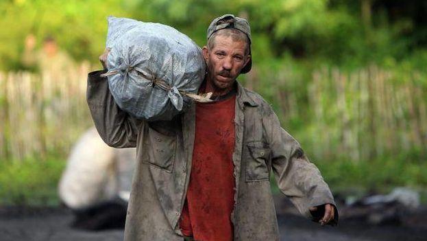 Un carbonero realiza su labor con el marabú en Cuba. (Alejandro Ernesto. EFE)