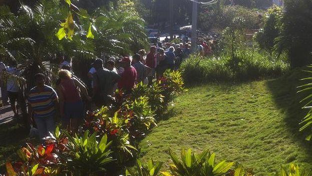 La cola para comprar papas en La Habana. (Luz Escobar/14ymedio)