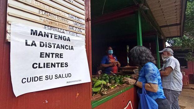 El regreso a la fase anterior para el control del coronavirus en La Habana agudizará las colas y el desabasto. (EFE)