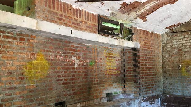 El moho y las plantas crecen en las paredes y las cúpulas, una situación empeorada por los murciélagos y el vandalismo. (14ymedio)