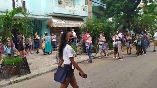 Las colas no han dejado de crecer en La Habana a pesar de las duras restricciones que entraron en vigor este 1 de septiembre. (14ymedio)